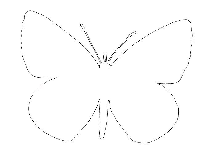 Бабочки в интерьере своими руками трафареты